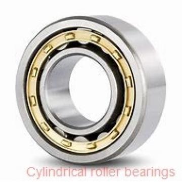 American Roller AMOR 317-H Cylindrical Roller Bearings