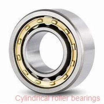 American Roller HCS 272 Cylindrical Roller Bearings