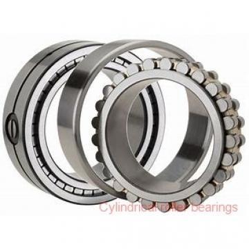 American Roller HCS 272 Cylindrical Roller Bearings